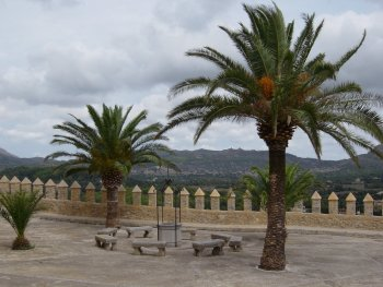 View from Fort San Salvador with palm trees